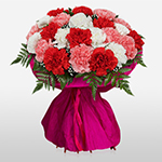 19 colorful carnations