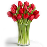 7 red tulips bouquet